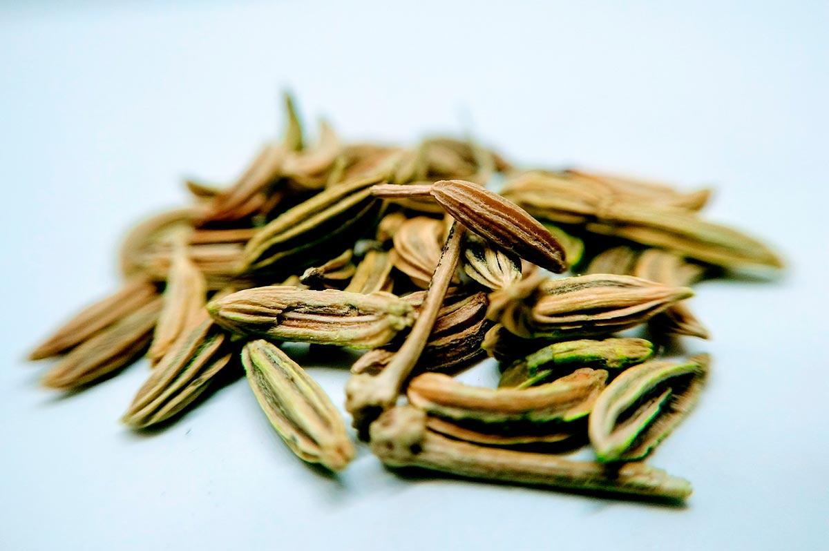 semillas de anis verde